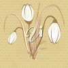 Spring Crocuses clipart