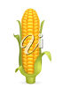 A cob of corn clipart