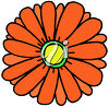A daisy-like flower clipart