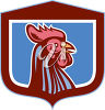 A rooster mascot clipart