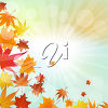 A border of autumn leaves clipart