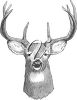 The head of a deer clipart
