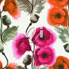 poppies image