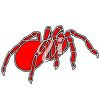 A red spider clipart