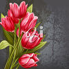 A bouquet of red tulips clipart