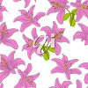A lily background clipart
