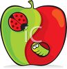 Clipart illustration of a worm and a lady bug in an apple. clipart