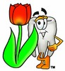 Cartoon Tooth Character Beside a Red Tulip clipart