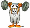 Cartoon Tooth Character Weightlifting clipart