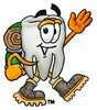 Cartoon Tooth Character Hiking clipart