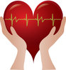 Clip Art Image Of Hands Holding A Heart With A Heart Rate Going Through The Heart clipart
