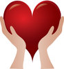 Clip Art Image of A Pair Of Hands Holding A Heart clipart