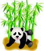 clip art image of a panda bear playing on the ground near green bamboo clipart