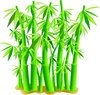 clip art image of tall green bamboo  clipart