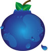 clip art image of a fresh blueberry with waterdrops clipart