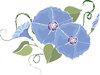 clip art illustration of pretty blue flowers on the vine clipart