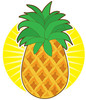Cartoon pineapple with the bright sun and sunshine behind clipart