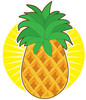 A whole pineapple with the bright Sun shining down upon it clipart